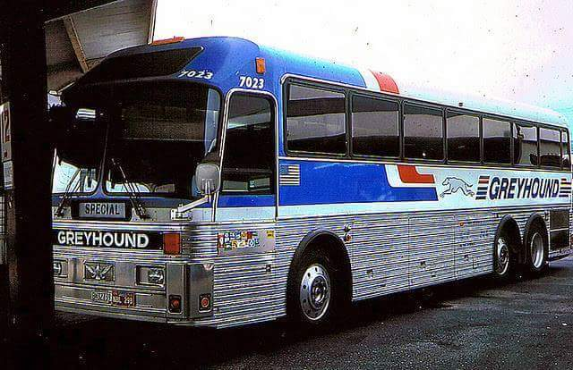 Eagle Model 15 in Greyhound Livery